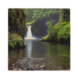 USA, Oregon, Columbia River Gorge 5 Wood Coaster