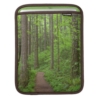USA, Oregon, Columbia River Gorge. Elowah Falls iPad Sleeves