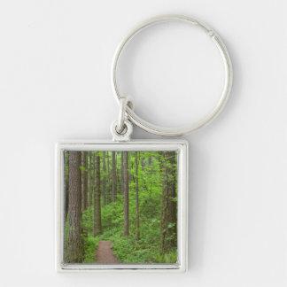 USA, Oregon, Columbia River Gorge. Elowah Falls Silver-Colored Square Key Ring