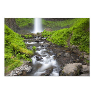 USA, Oregon, Columbia River Gorge, Latourell Photo Print