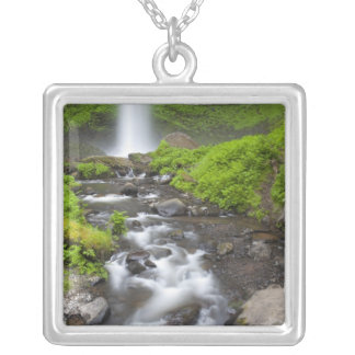 USA, Oregon, Columbia River Gorge, Latourell Silver Plated Necklace