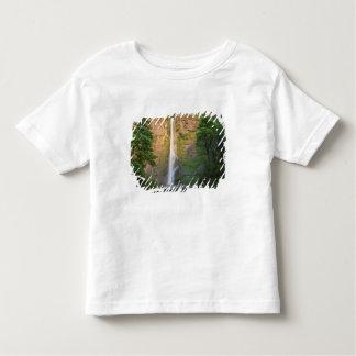 USA, Oregon, Columbia River Gorge, Multnomah Toddler T-Shirt
