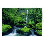 USA, Oregon, Columbia River Gorge National 2 Greeting Card