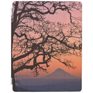 USA, Oregon, Columbia River Gorge National 2 iPad Cover