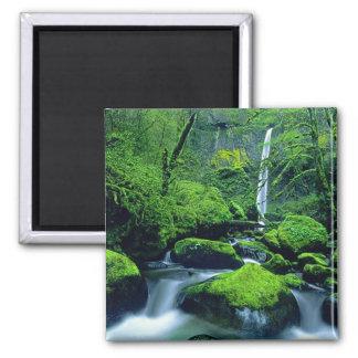 USA, Oregon, Columbia River Gorge National 2 Magnet