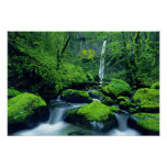 USA, Oregon, Columbia River Gorge National 2 Poster