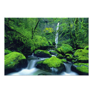 USA, Oregon, Columbia River Gorge National 3 Photo Print