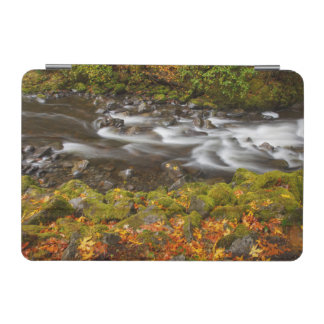 USA, Oregon, Columbia River Gorge, Tanner Creek 2 iPad Mini Cover