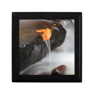 USA, Oregon, Columbia River Gorge, Tanner Creek 3 Gift Box