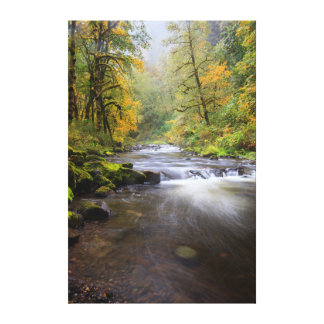 USA, Oregon, Columbia River Gorge, Tanner Creek Canvas Print