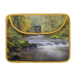 USA, Oregon, Columbia River Gorge, Tanner Creek Sleeve For MacBooks