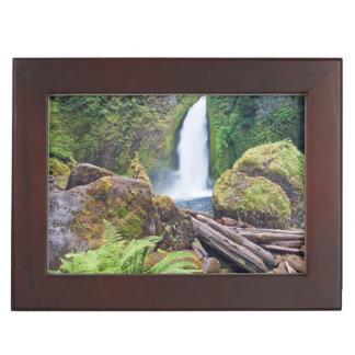 USA, Oregon, Columbia River Gorge, Wahclella Keepsake Box