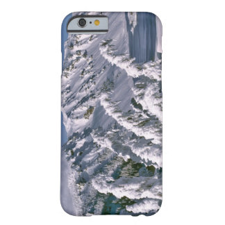 USA, Oregon, Crater Lake NP. Trees bow under the Barely There iPhone 6 Case