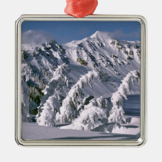 USA, Oregon, Crater Lake NP. Trees bow under the Christmas Ornament