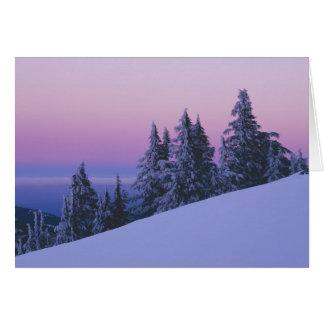 USA, Oregon, Deschutes National Forest, Dusk Card