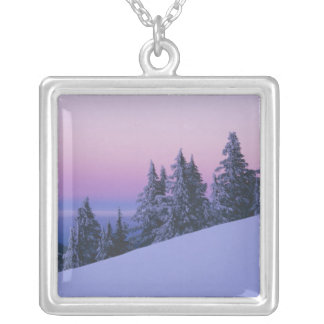 USA, Oregon, Deschutes National Forest, Dusk Silver Plated Necklace
