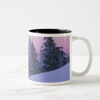 USA, Oregon, Deschutes National Forest, Dusk Two-Tone Coffee Mug