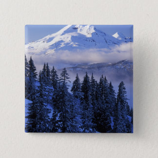 USA, Oregon, Deschutes National Forest, South 15 Cm Square Badge