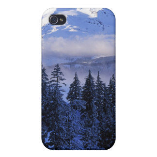 USA, Oregon, Deschutes National Forest, South Case For The iPhone 4