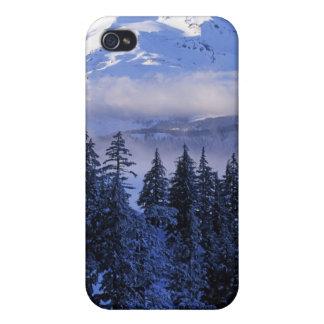 USA, Oregon, Deschutes National Forest, South iPhone 4/4S Case