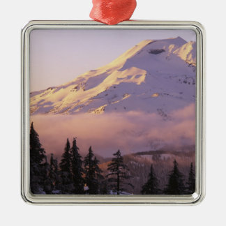 USA, Oregon, Deschutes National Forest, The Silver-Colored Square Decoration