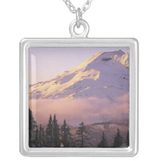 USA, Oregon, Deschutes National Forest, The Silver Plated Necklace