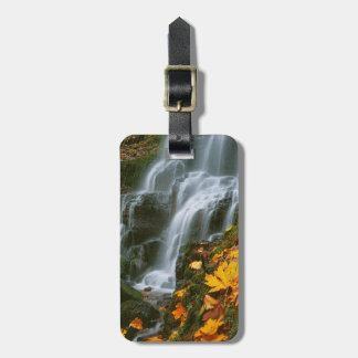 USA, Oregon, Fairy Falls, Columbia River Gorge Luggage Tag