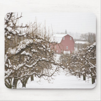 USA, Oregon, Hood River. Snow covered Apple Mouse Pad