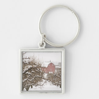 USA, Oregon, Hood River. Snow covered Apple Silver-Colored Square Key Ring
