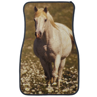 USA, Oregon. Horse in a field of daisies Car Mat