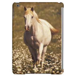 USA, Oregon. Horse in a field of daisies Cover For iPad Air