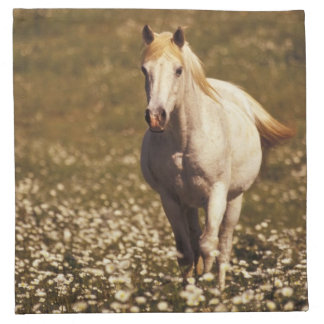 USA, Oregon. Horse in a field of daisies Napkin