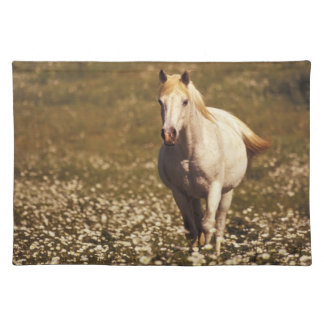 USA, Oregon. Horse in a field of daisies Placemat
