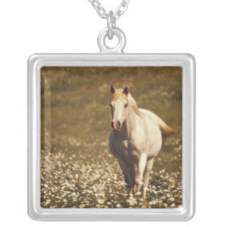 USA, Oregon. Horse in a field of daisies Silver Plated Necklace