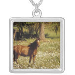 USA, Oregon. Horse in field of daisies Personalized Necklace
