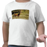 USA, Oregon. Horse in field of daisies Shirt