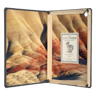 USA, Oregon, John Day Fossil Beds 2 iPad Air Cases