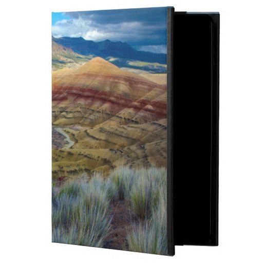 USA, Oregon. Landscape Of The Painted Hills iPad Air Case
