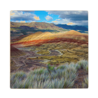 USA, Oregon. Landscape Of The Painted Hills Wood Coaster