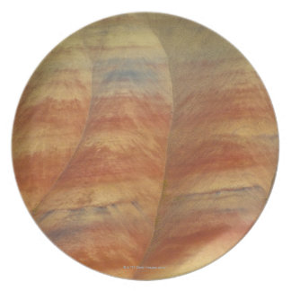 USA, Oregon, Mitchell, Painted Hills, Close-up Dinner Plate