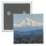 USA, Oregon, Mount Hood in winter Pins