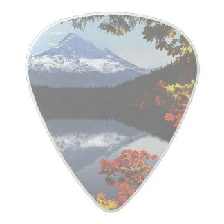 USA, Oregon, Mt. Hood National Forest. Acetal Guitar Pick