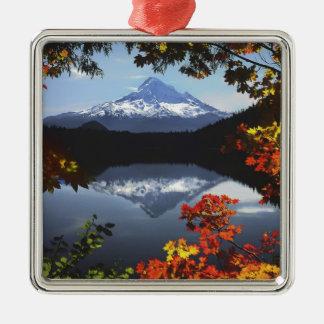 USA, Oregon, Mt. Hood National Forest. Christmas Ornament
