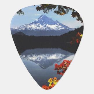 USA, Oregon, Mt. Hood National Forest. Guitar Pick