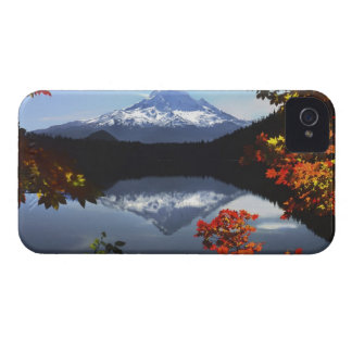 USA, Oregon, Mt. Hood National Forest. iPhone 4 Case-Mate Case