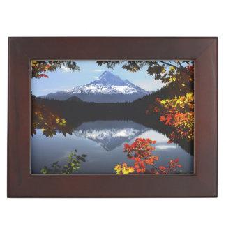 USA, Oregon, Mt. Hood National Forest. Keepsake Box