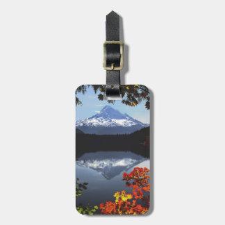 USA, Oregon, Mt. Hood National Forest. Luggage Tag