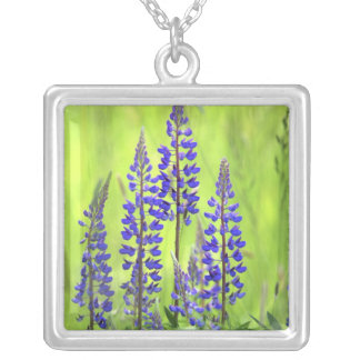 USA, Oregon, Mt. Hood National Forest, Lupine Silver Plated Necklace