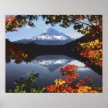 USA, Oregon, Mt. Hood National Forest. Poster