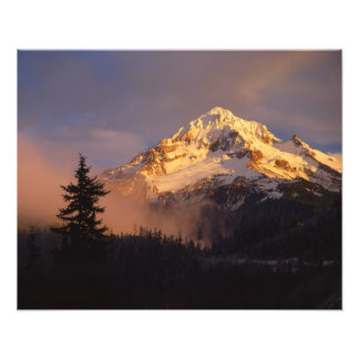 USA, Oregon, Mt. Hood National Forest. Rolling Photo Print